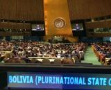 Sesión en la ONU